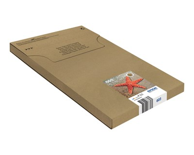 Epson Bläck Multipack 4-Color 603 Easy Mail Packaging